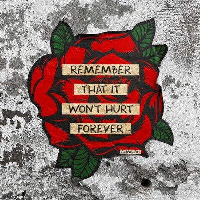 "image of a red rose with phrase, ""Remember that it won't hurt forever"" AJ Maldo"